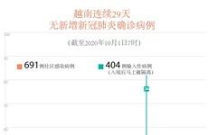 图表新闻:新冠肺炎疫情:越南连续29天无新增本土病例