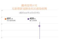 图表新闻:越南连续37天无新增新冠肺炎社区感染病例