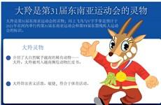 图表新闻:大羚是第31届东南亚运动会的灵物