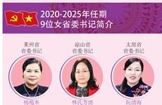 图表新闻:越南9位女省委书记简介