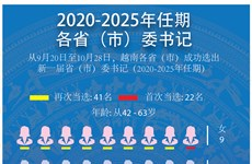 图表新闻:越南63名省(市)委书记介绍