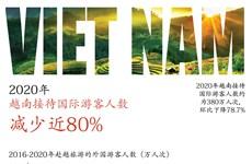 图表新闻:2020年越南接待国际游客人数减少近80%