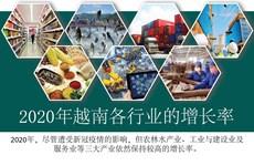 图表新闻:2020年越南各行业保持较高的增长率