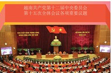 图表新闻:越南共产党第十二届中央委员会第十五次全体会议各项重要议题