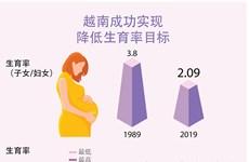 图表新闻:越南成功实现降低生育率目标