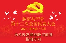图表新闻:越共十三大:为未来发展战略与前景指明方向