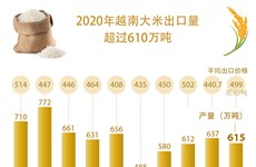 图表新闻:2020年越南大米出口量超过610万吨
