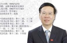 图表新闻:越共中央政治局委员武文赏同志任中央书记处常务书记