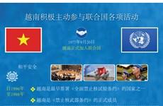 图表新闻:越南积极主动参与联合国各项活动