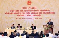 政府总理阮春福:2020年内完善农林业公司重组工作