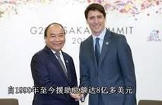 越南与加拿大跨越大洋的友好合作关系