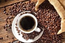 越南咖啡出口呈猛降趋势