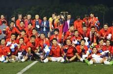 2019年越南七大体育新闻