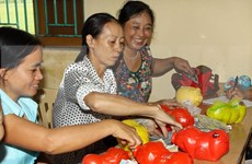 组图:回忆越南妇女的精彩时刻