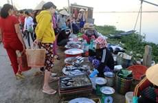 沉浸在三江泻湖黎明的美丽中  了解渔民的生活