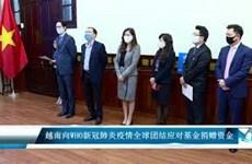越南向WHO新冠肺炎疫情全球团结应对基金捐赠资金