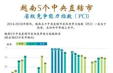 图表新闻:越南5个中央直辖市省级竞争能力指数 (PCI)