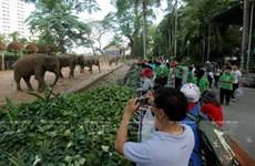 疫情趋缓   西贡草禽园成为居民的理想游玩地点