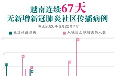 图表新闻:越南连续67天无新增新冠肺炎社区传播病例