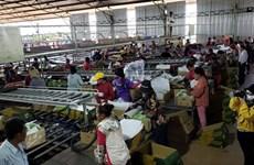 越南农业经营企业为柬埔寨劳动者创造就业机会