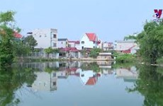 北宁省积极开展生物多样性保护工作