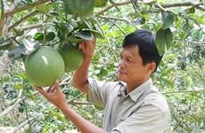 获得地理标志认证为农产品进军国外市场敲开大门