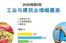 图表新闻:2020年前9月工业与建筑业增幅最高