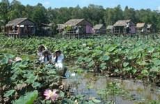 隆安省致力于充分开发同塔梅旅游潜力
