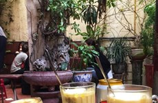 河内鸡蛋啤酒征服国际游客的味蕾