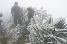 谅山省母山山顶被寒冷空气笼罩