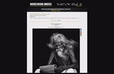 越南摄影师荣获黑白摄影大赛多个奖项