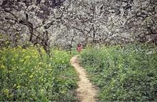 组图:来木州县探索仙境般的旅游景点