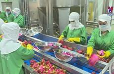 提升出口水果价值  奋力突破40亿美元大关