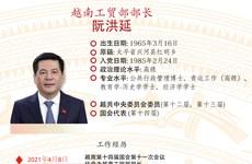 图表新闻:阮洪延被任命为越南工贸部部长