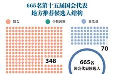 图表新闻:665名第十五届国会代表地方推荐候选人结构