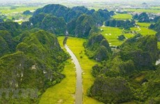 传递绿色环保理念  共建美丽家园