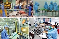 越南企业坚定信心战疫情  攻坚克难促生产