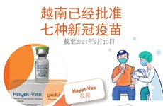 图表新闻:越南已经批准七种新冠疫苗