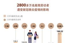 图表新闻:2800多万名越南劳动者遭受新冠肺炎疫情的影响