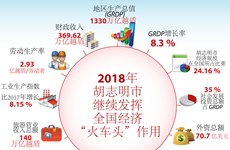 """图表新闻:2018年胡志明市继续发挥全国经济""""火车头""""作用"""