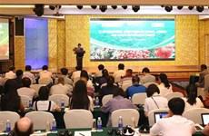 越南学习借鉴龙眼与荔枝生产国际经验