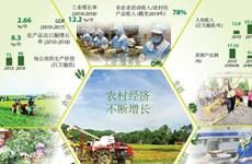 图表新闻:越南农村经济不断增长