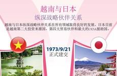 图表新闻:越南与日本纵深战略伙伴关系