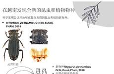 图表新闻:在越南发现全新的昆虫和植物物种