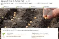 图表新闻:越南将有药用价值的种子送上太空