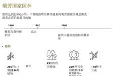图表新闻:菊芳国家园林