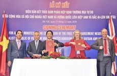 将越南打造成为全球经济融合的亮点