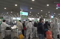 越南将从俄罗斯的345名越南公民接回国