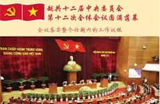 图表新闻:越共十二届中央委员会第十二次全体会议圆满落幕