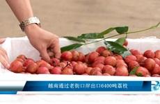 越南通过老街口岸出口6400吨荔枝